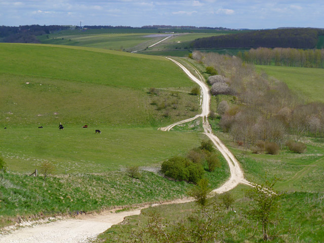 Track and downland, Upavon