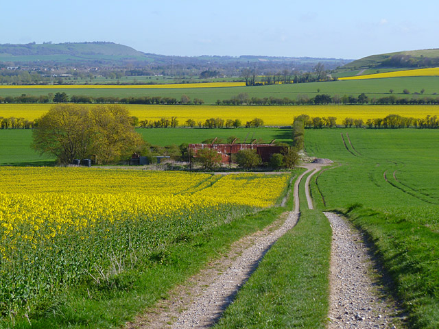 Track and farmland, Manningford