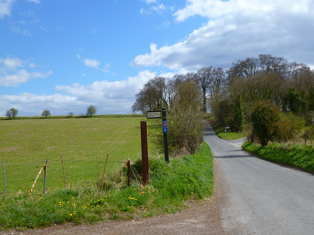 Road and pasture, Figheldean