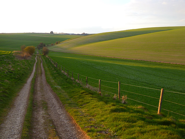 Byway and farmland, Collingbourne Kingston