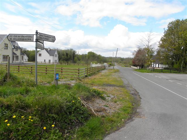 Road at Killygreagh