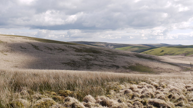Grassy moorland on Carn Nant-yr-ast