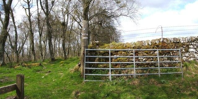 Gate at edge of Quarry Wood