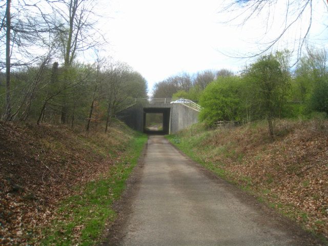 Subway (M3) in Micheldever Wood