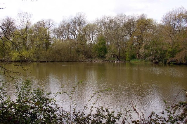 The Decoy Pond from the hide