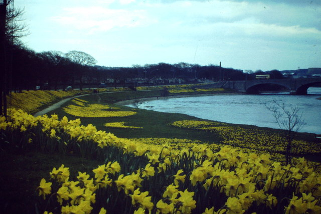 Spring on Riverside Drive