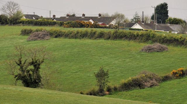 Suburban fields, Bangor