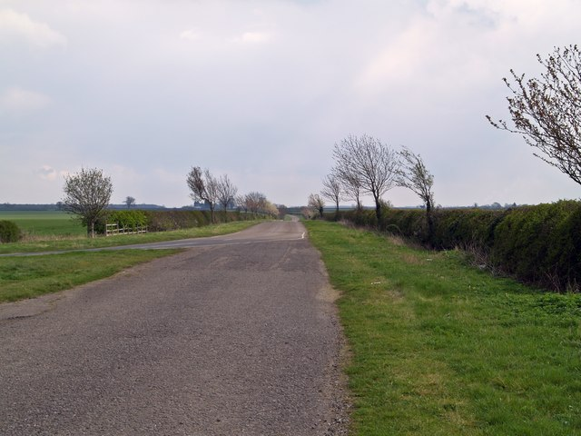 Hooby Lane