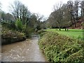 SJ8382 : The River Bollin by Christine Johnstone