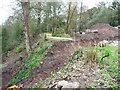 SJ8383 : Landslip at Quarry Bank by Christine Johnstone