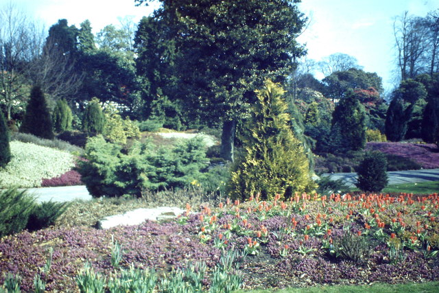 Heather Garden, Hazlehead
