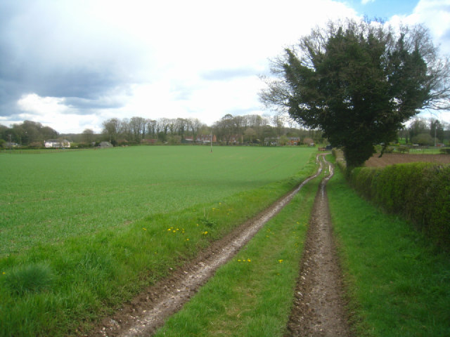 Track/path to Steventon