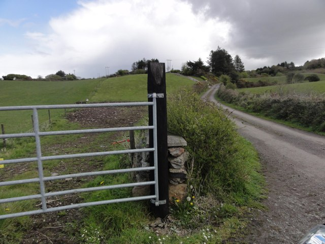 Gate by the road