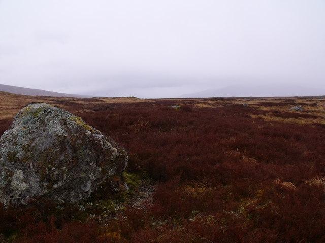 Random boulder on Rannoch Moor