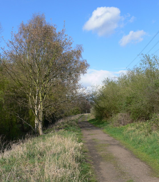 Gravel track on the Aylestone Meadows
