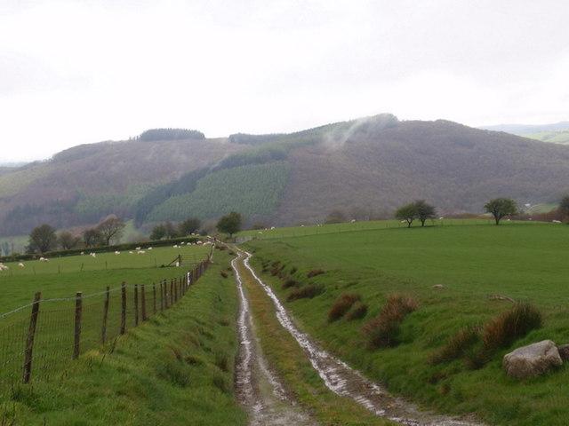 Llwybr Ceffyl / bridleway, Cwrt y Cadno