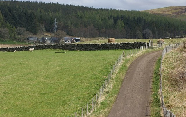 Balloan Farm and Woodland