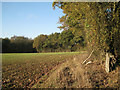 SP1363 : Woodland enclosing the end of a field by Robin Stott