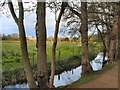SP5205 : Christ Church Meadow by Paul Gillett