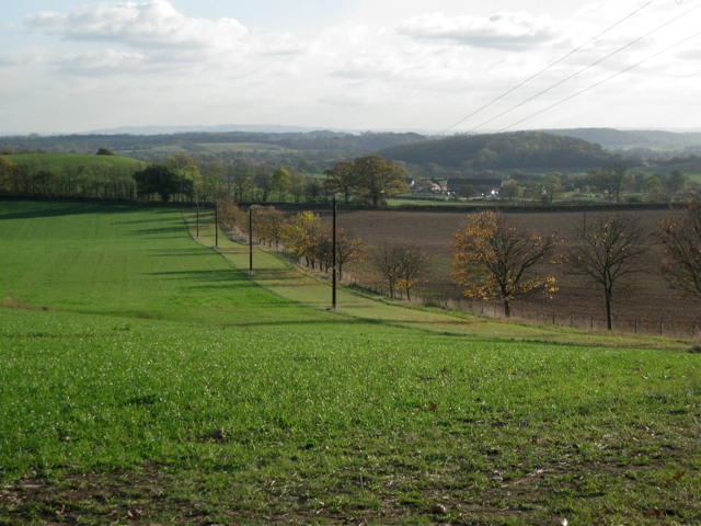 Field boundary south of Wootton Hill Farm