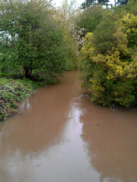 Golden Brook in West Park nearly floods