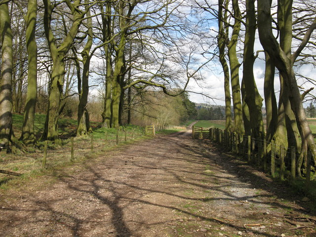 Track near South Slipperfield