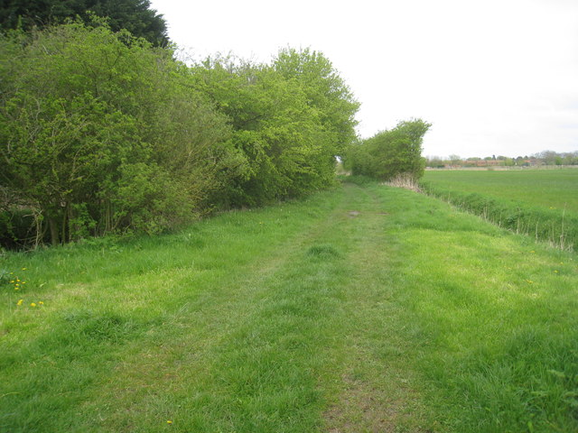 Byway at Marshchapel (2)