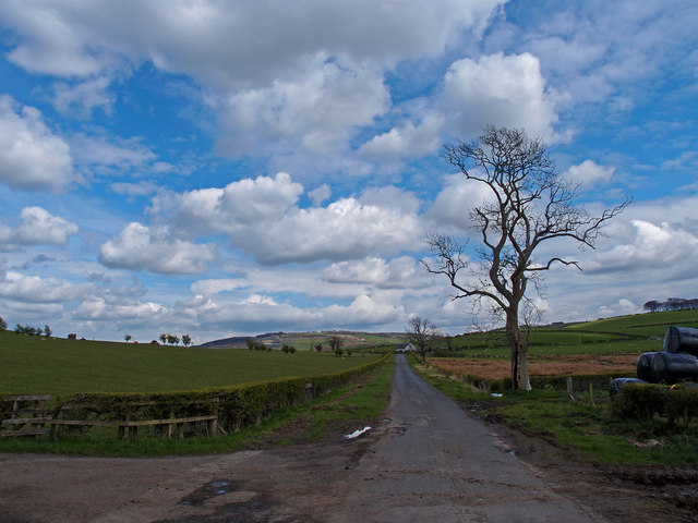 Minor Road at Oldwalls Farm
