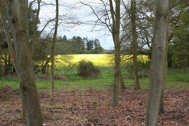 Elvetham, Hampshire