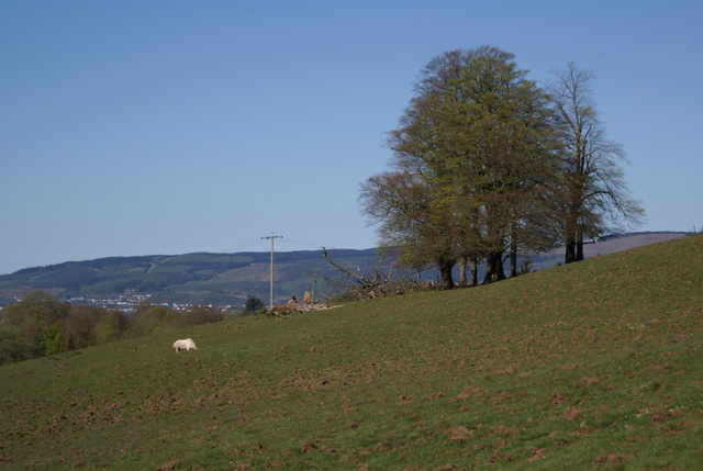 Bargane Hill