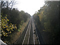 SP1464 : The Shakespeare Line below Mayswood Road by Robin Stott