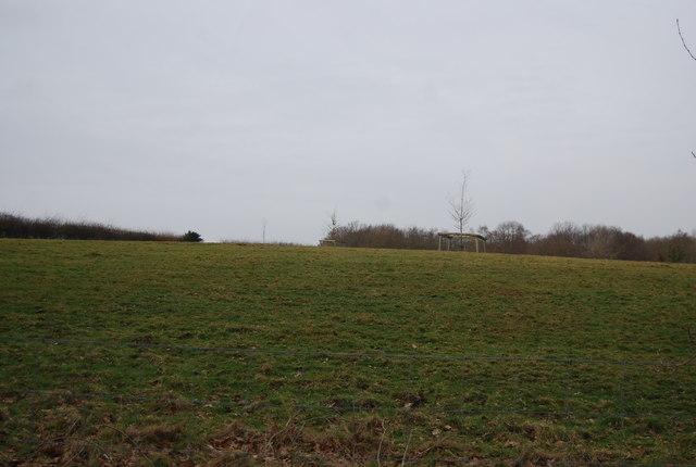 Farmland, Hare Holt