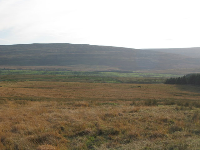Hartleyburn Common (North Side) northwest of Cocklit Hill