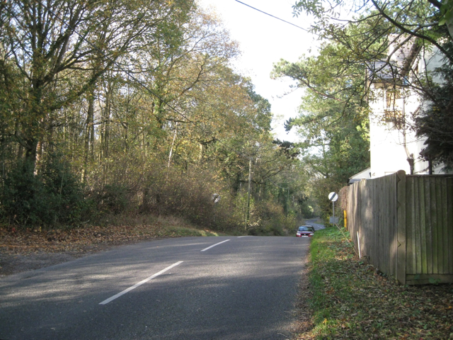 May's Wood and Mayswood Road