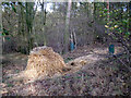 SP1464 : Straw pile and feeders, May's Wood by Robin Stott
