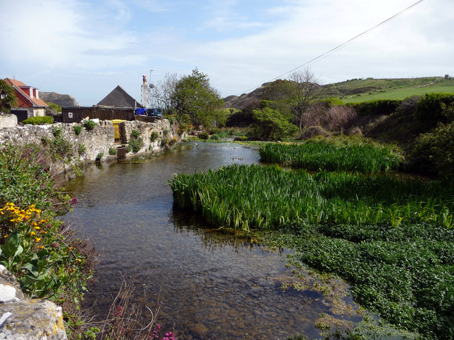 Pond, Lulworth Cove, Dorset