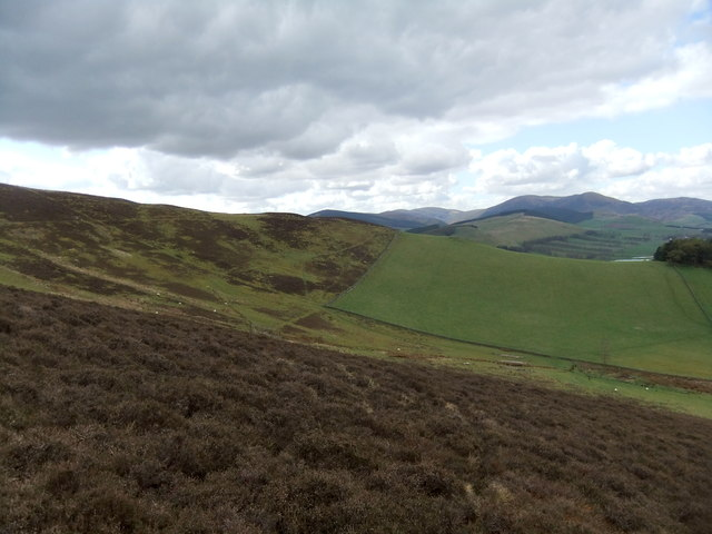 Looking towards Cat Cleuch Head