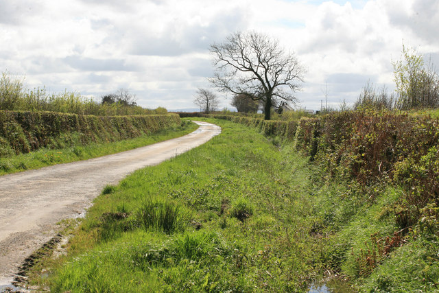 Rural lane nr Cross Park