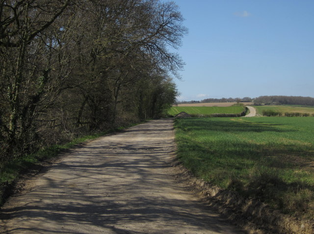 Bridleway near Cayton