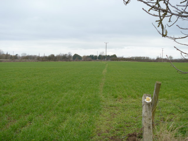 Across Wad Ground