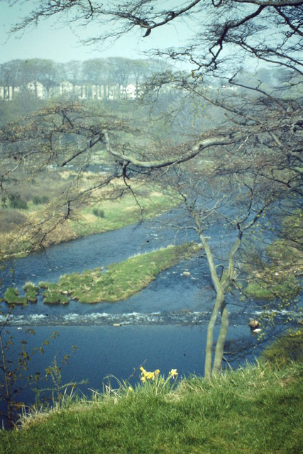 River Don Below Tillydrone