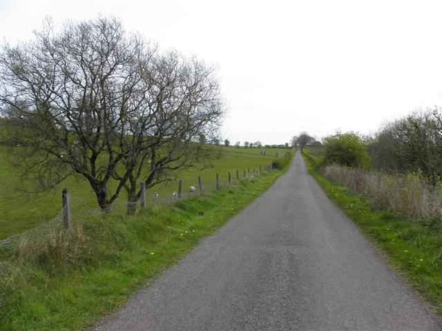 Road at Beltany