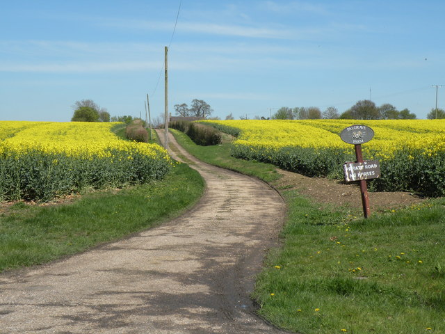 The approach to Palgrave Farm