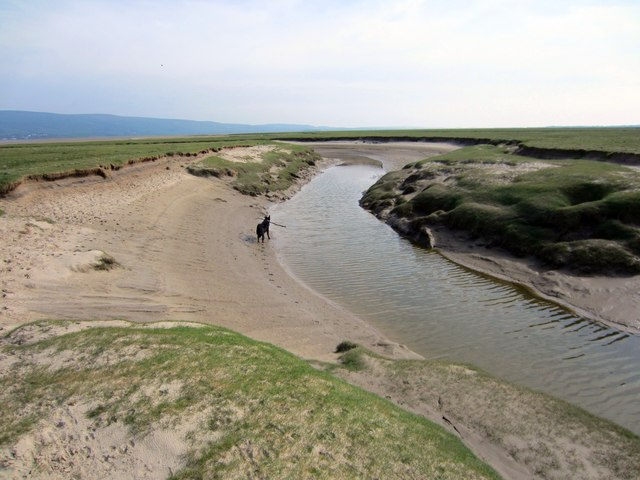 Black Beck wending its way across Shaw Marsh