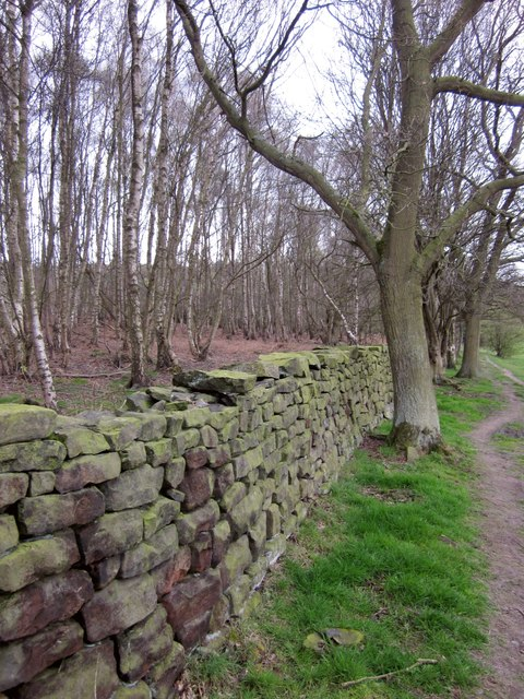 Wall by The Moor