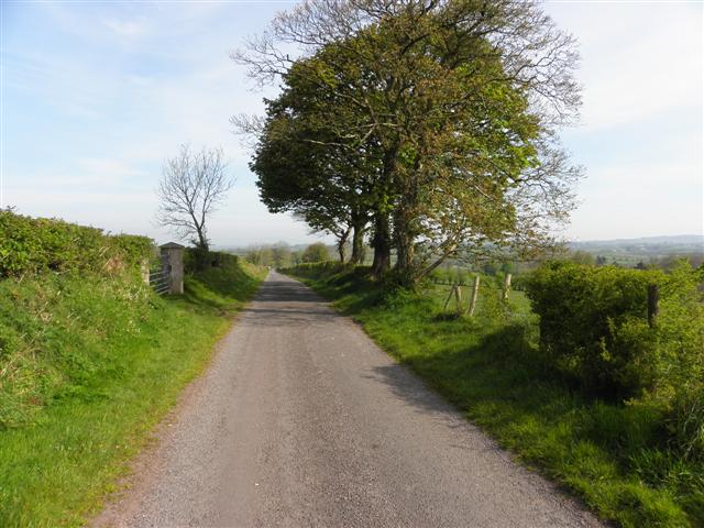 Road at Cloneblaugh