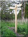 SE4316 : Walkers signpost by Mike Kirby