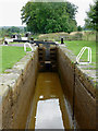 SJ8255 : Lock No 46 (south) near Church Lawton, Cheshire by Roger  Kidd