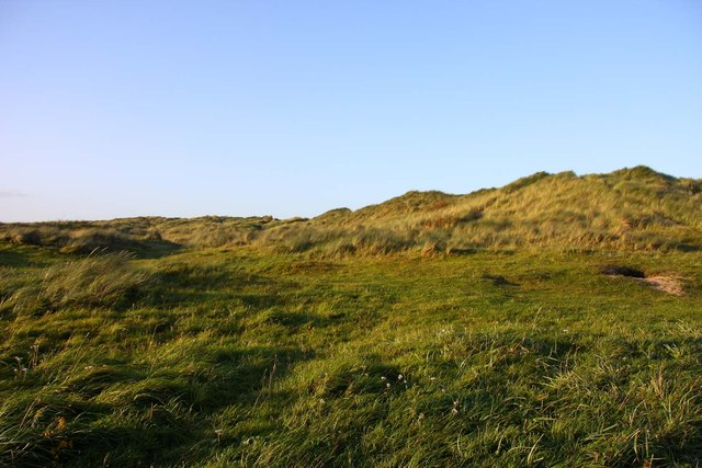 Grass covered dunes by Links Road