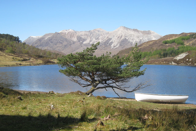 Tree and boat by Loch Coulin